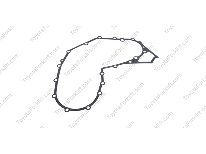 Timing Chain Gasket