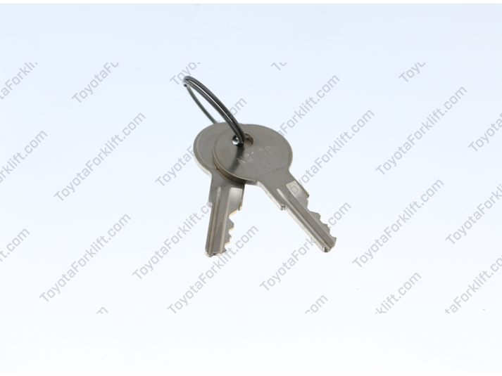 Set of 2 Keys