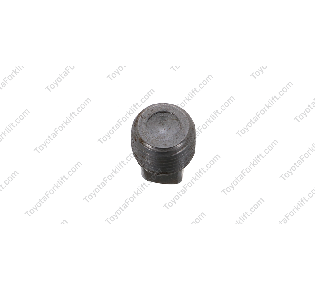 Intake Manifold Plug